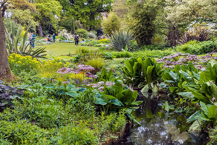The Beth Chatto Gardens